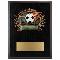 Sports Plaque (Small) - Soccer