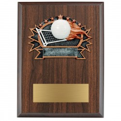 Sports Plaque (Small) - Volleyball